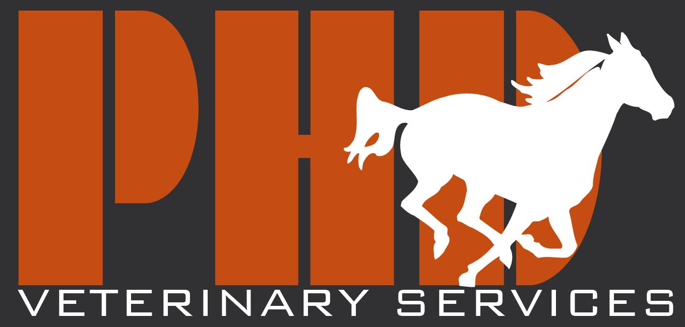 Perth Horse Dentistry