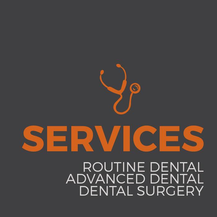 Dr Tom Hamilton, Horse Dentist Perth